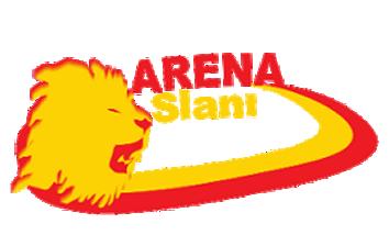 Arena Aslanı